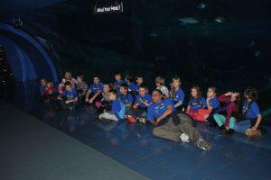 oceanarium 161